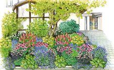Pflanzidee Blütenfülle im Vorgarten