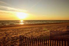 spring break is coming soon and the beach is calling my nammeee