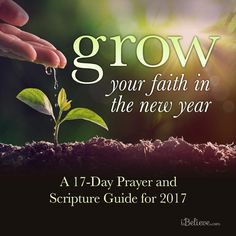Grow Your Faith in the New Year: A 17-Day Prayer Guide and Scripture Guide for 2017 - Free Download #printable #scriptureguide #prayerguide