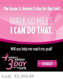 Susan G. Komen 3-Day for the Cure  November 8-10, 2013 Arizona