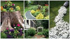 20 de idei de amenajare a gradinii cu flori