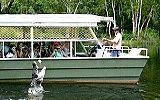 Hartley's Lagoon Crocodile Cruise #ecotourism #Queensland #Australia