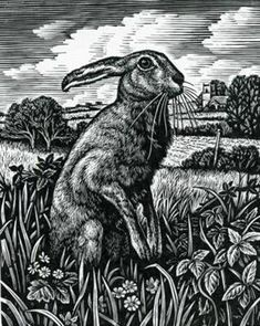 Howard Phipps. March Hare. (wood engraving)