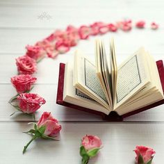 DesertRose•❤️•Qur'an Kareem,;, اللهم اجعل القران الكريم ربيع قلوبنا ونور صدورنا وجلاء أحزاننا وذهاب همومنا وشفاءنا من كل داء،،، اللهم آااامين وأجمعين،،،