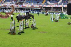 Daniel Bluman jumping. #horseware #dublinhorseshow #RDS