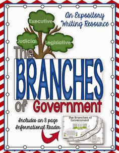 Simply Skilled in Second Branches of Government