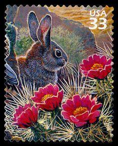 US Stamp 1999 - Sonoran Desert Desert Cottontail
