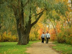 With nearly 160km of well maintained trails, the Edmonton river valley is a great place for a stroll.
