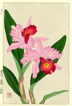 Kawarazaki Shodo 'Orchid' 1954