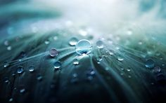 Abstract Water Drops HD Wallpapers Download