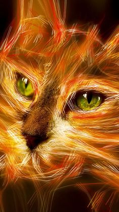 Firestar a warrior of promise...                   Only warrior fans (that have read ALL the books) will get that