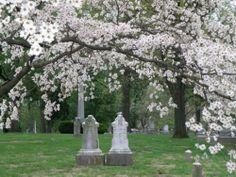 Bellafontaine Cemetery St. Louis Missouri
