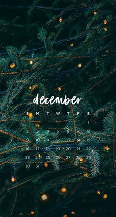 Wall paper winter christmas phone backgrounds ideas for 2020 Iphone Wallpaper Herbst, Holiday Iphone Wallpaper, Christmas Phone Wallpaper, Wallpaper Free, Calendar Wallpaper, Holiday Wallpaper, Aesthetic Iphone Wallpaper, Wallpaper Backgrounds, December Wallpaper Iphone