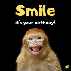Happy Birthday Images Quotes - Happy Birthday Wishes Iamges Happy Birthday Brother Funny, Best Happy Birthday Quotes, Happy Birthday Status, Funny Happy Birthday Images, Birthday Wishes For Friend, Birthday Wishes Funny, Happy Birthday Pictures, Birthday Songs, Happy Birthday Messages