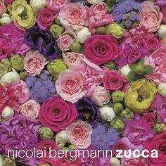 ZUCCa×Nicolai Bergmann