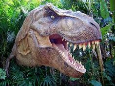 The best places to go in Sydney and NSW with dinosaur-mad kids. Calling all dino-lovers! Check out these fantastic dinosaur activities and birthday party ideas for your dino-fans! T Rex Jurassic Park, Jurassic Park World, Extinct Animals, Prehistoric Animals, Disney Tangled, Dinosaur Age, Resident Assistant, Res Life, Disney Couples
