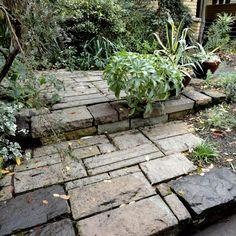 danger garden: Another visit to the garden of Mr. Sean Hogan