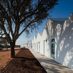 Sobreiras Alentejo Country Hotel by FAT (6)