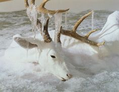 """Erick Swenson, """"Untitled"""" (detail), 2004, polyurethane resin, acrylic paint, MDF, polystyrene"""