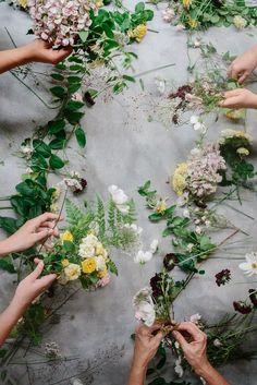 "floralls: ""(by luisa brimble)"""