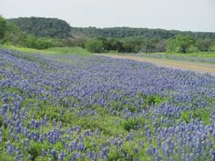 """A must see view of """"the blues"""" near Enchanted Rock"""