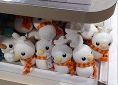 Pokemon Photos from Tokyo - Torchic Pokedaruma snowman plush dolls