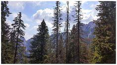 Se vad munti in departare si bucurie odata cu ei #mountainsview #adventure