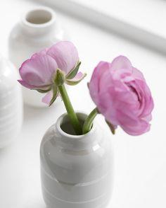 Ein Hauch rose, #gutenmorgen #goodmorning #omaggio #kähler #kählerdesign #danishdesign #handwerk #interior #decoration #freshflowers #welcome2017 #streifenliebe #flowers #delicate #neuesjahr #vase