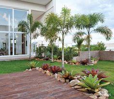 jardins com pandanus - Pesquisa Google