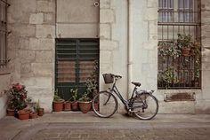bicycle. by lolita