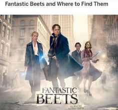 Join Newt Scamander and his friends as you piece together the Fantastic Beasts and Where to Find Them The Search Puzzle. Based from the successful film, this challenging puzzle is perfect for fans and family alike to enjoy. The Office Show, Office Tv, The Office Jim, Alison Sudol, Jude Law, Albus Dumbledore, Dundee, Daniel Radcliffe, Draco Malfoy