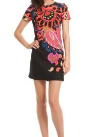 Natasha Dress - This sassy shift, in a colorful paisley print, will ignite your fall wardrobe. The Natasha offers a flattering fit, with a bit of stretch, and a bold presence that transitions perfectly from day to night. Goes with everything from black booties to hot pink heels. Lined. Dry clean.