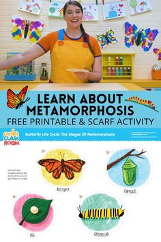 Learn all about metamorphosis with Caitie in the classroom! Craft Activities For Kids, Science For Kids, Toddler Activities, Butterfly Chrysalis, Butterfly Life Cycle, Toddler Preschool, Life Cycles, Beautiful Butterflies, Baby Ideas