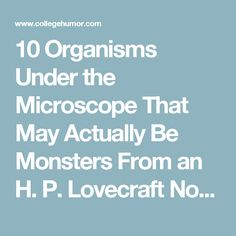10 Organisms Under the Microscope That May Actually Be Monsters From an H. P. Lovecraft Novel (Page 2) - CollegeHumor Post