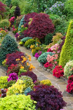 Path through the colours of late spring by Four Seasons Garden, via Flickr