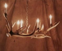 Antlers, I have For chandelier under the deck in summer. With vintage jars securely hooked on with candles for evening light. Store away in winter; maybe bring out for Christmas decor. Antler Lights, Antler Chandelier, Chandeliers, Elk Horns, Deer Lamp, Craftsman Remodel, Moose Lodge, Diy Home Security, Antler Art