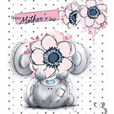Happy Mothers Day Sketchbook Me to You Bear Card : Me to You Bear Store, the entire Me to You Bear Collection including Plush, Figurines, Stationary, Balloons and Bikes. Teddy Pictures, Cute Pictures, Dallas Cowboys Pictures, Blue Nose Friends, Bear Card, Tatty Teddy, Disney Tattoos, Card Reading, Disney Drawings