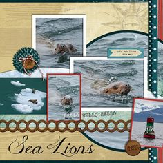 #DisneyCruise Scrapbook Layout - Sea Lions by Sharon