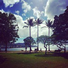 【norieternalife】さんのInstagramをピンしています。 《Beach cleaning with Halloween costume👻🌞🌴🌺🐠 ハロウィコスでビーチクリーン🏖😝🏝😘 #honoluluumisakura#beach#cleaning#clean#nature#sky#ocean#sea#beautifulday#Hawaii#Honolulu#alohaoutdoors#hilife#Halloween #ビーチクリーン#掃除#ボランティア#ビーチ掃除#ビーチ清掃#ホノルル海さくら#海さくら#ホノルル#ハワイ#自然#空#海#ハロウィン》