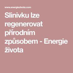 Slinivku lze regenerovat přírodním způsobem - Energie života