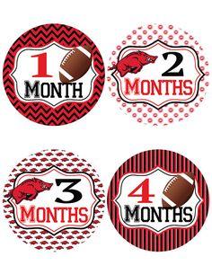Arkansas Razorback Baby Belly Stickers ~ Monthly Baby Milestone Stickers (298)