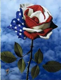 Beautiful red white and blue
