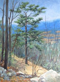"Daily Paintworks - ""FEBRUARY ALONG THE BLUE RIDGE an Original Oil Painting by Claire Beadon Carnell"" - Original Fine Art for Sale - © Claire Beadon Carnell"