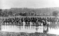 Cer battle 1914.