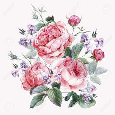 Classical Vintage Floral Greeting Card, Watercolor Bouquet Of.. Stock Photo, Picture And Royalty Free Image. Image 43009885.