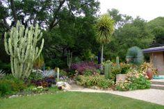 Garden of the Week