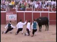 Bull leaping , Recortadores , superman jump  ,Paul Merton in Spain- Good example of bull jumping  Crete in Ancient Greece.