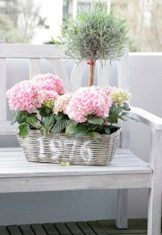 Hydrangea and topiary. What could be better? Beautiful Flowers Garden, My Flower, Pretty Flowers, Beautiful Gardens, Flower Power, Romantic Flowers, Flower Basket, Pink Flowers, Hortensia Hydrangea