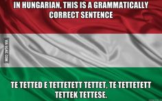 It may be true that in the Hungarian language Te tetted e tettetett tettet, te tettetett tettek tettese is grammatically correct, but how often is this sentence actually used by Hungarian speakers? More importantly, if it is commonly used do Hungarians struggle with it?