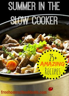 Here is a list of 25 slow cooker meals that would be great for feeding your family this summer.